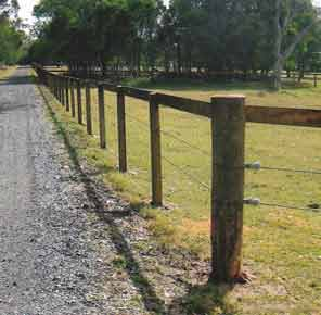 100x100 Timber Fence Posts Pointed Fence Posts Wooden